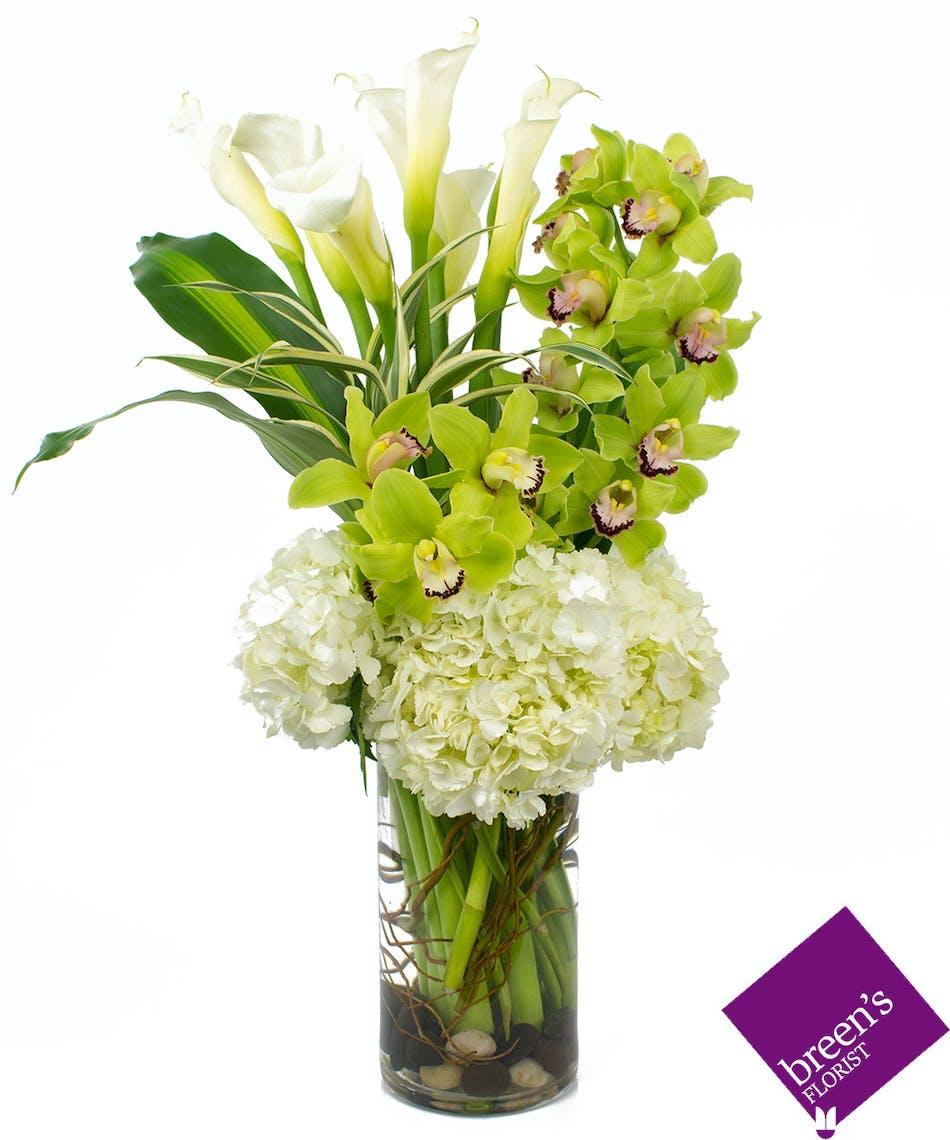 Thats Amore Breens Florist Voted Best Florist Houston Tx