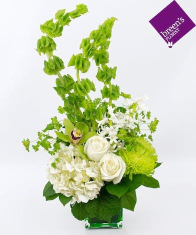 May Birthdays Emerald Birthston Flowers Houston