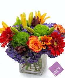 Bold 'n Beautiful :: Breen's Florist Houston Texas Flowers