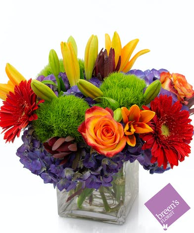 Bold 'n Beautiful :: Breen's Florist Houston Texas Flowers