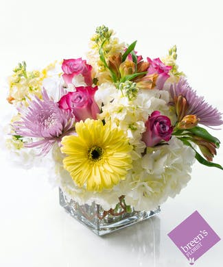 Houston Tx Just Because Flower Delivery Breens Florist