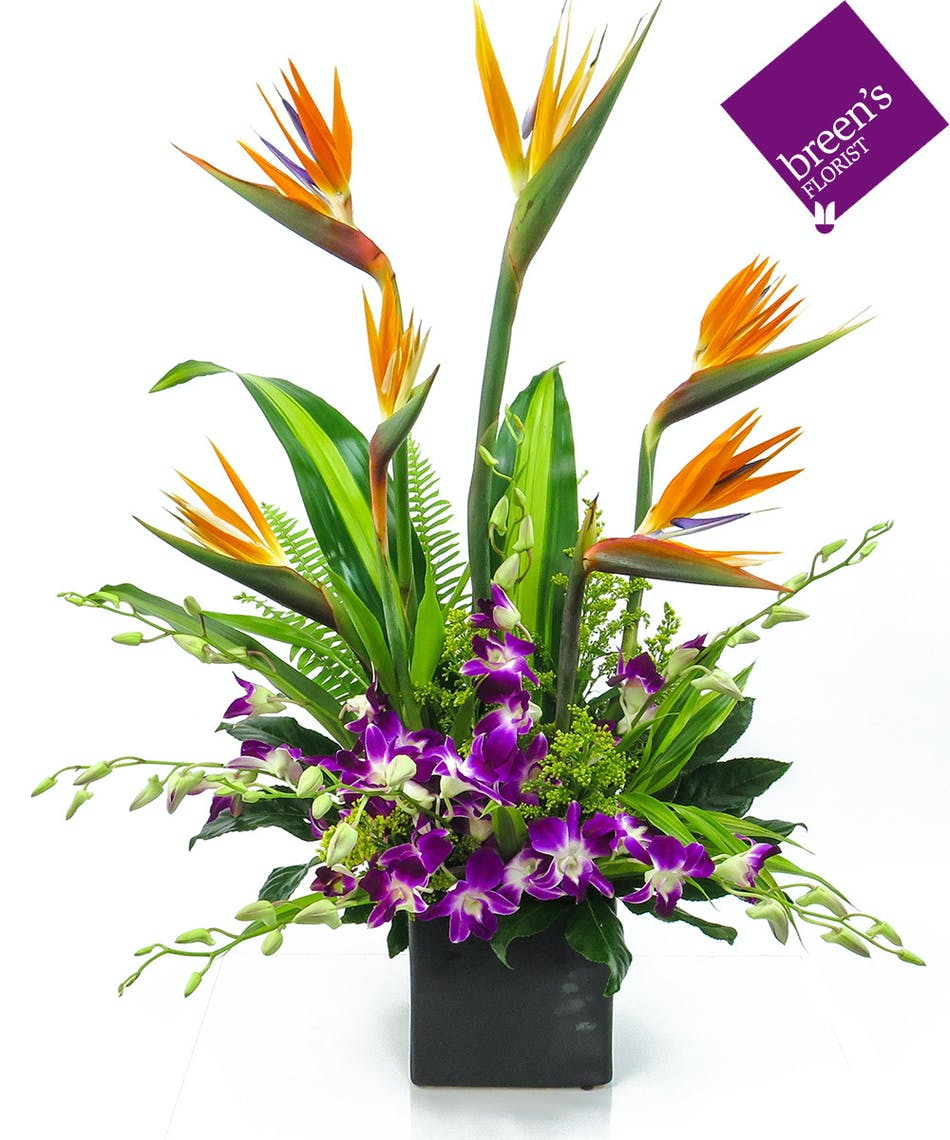 Lost Island Breens Florist Voted Best Florist Houston Tx
