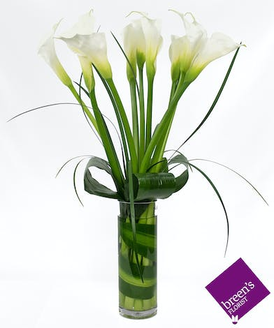 Classy Callas :: Upscale flowers Breen's Florist Houston Texas