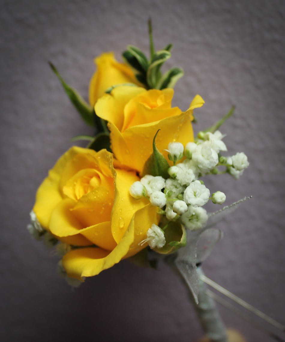 Simply Yellow Boutonniere Breens Florist Voted Best Florist