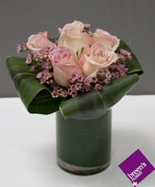 XOXO Roses - 6 Pink