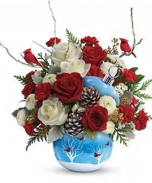 Houston Florist : Teleflora's Cardinals In The Snow