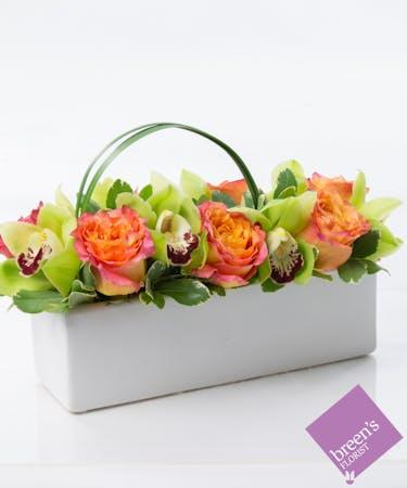 Houston Tropical Flowers Breen S Florist Tx