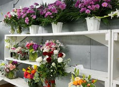 Potted arrangements and bouquets on display in our Houston location